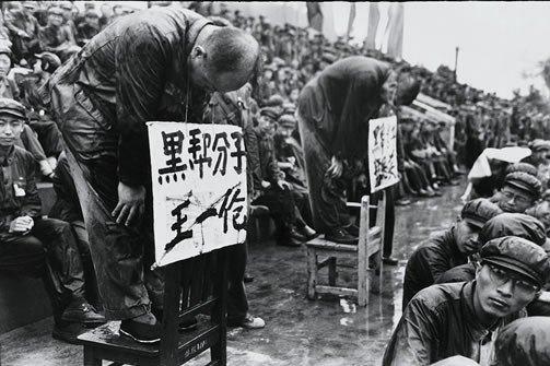 Cronache di un venditore di sangue - Rivoluzione culturale